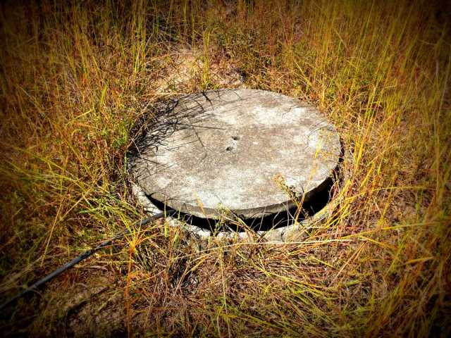 We Found Our Well / Spring