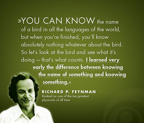 Richard Feynman: Concepts vs Experiences