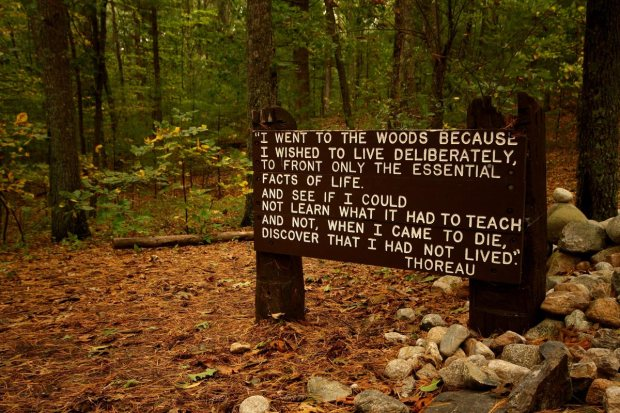 Thoreau: Learning the essentials of life in the woods