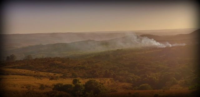 Dry Season Fires of the Cerrado (Savanna)