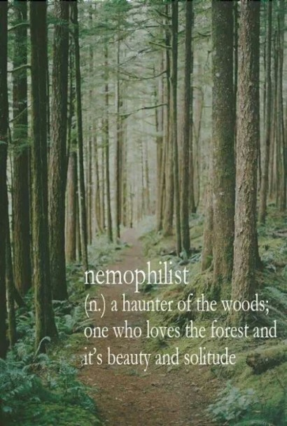 "Nemophilist: ""a haunter of the woods; one who loves the forest and it's beauty and solitude."""