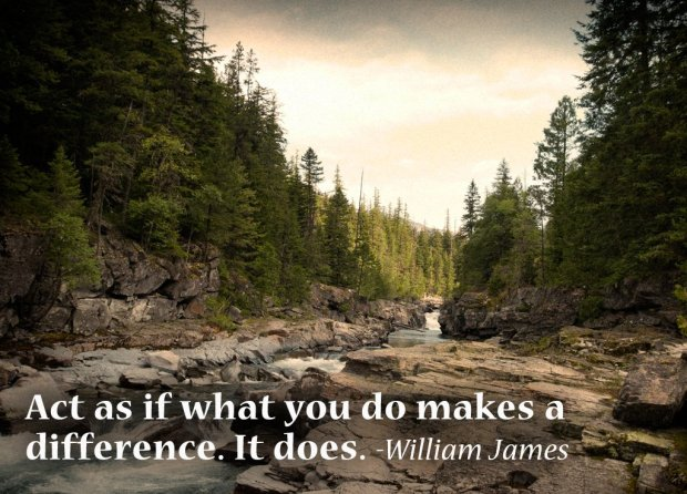 """William James: """"Act as if what you do makes a differences. It does."""""""