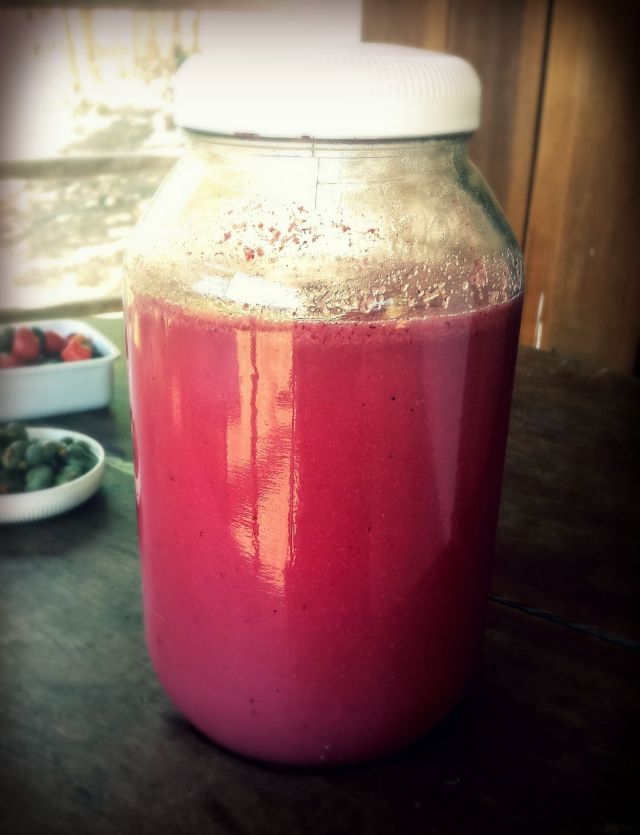 Fermented Jambo / Rose Apple Juice