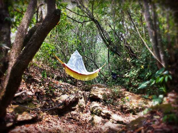 A peaceful spot for a hammock to relax or take naps. It still needs a rain cover now that the rains have started.