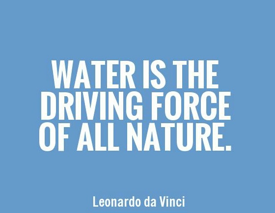 "Leonardo da Vinci: ""Water is the driving force of all nature."""