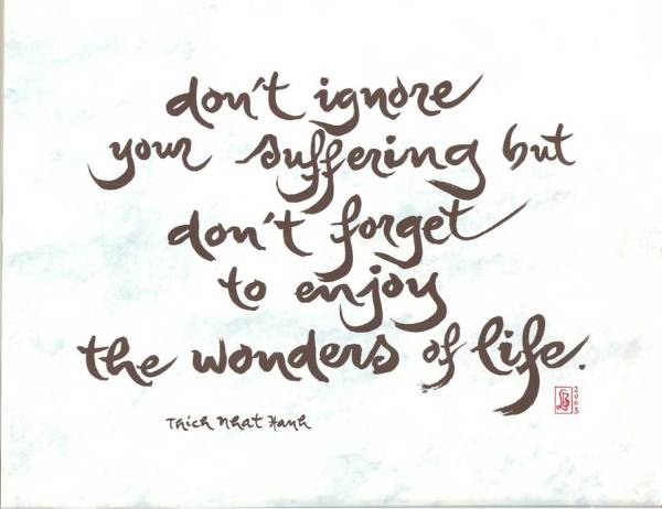 "Thich Nhat Hanh: ""Don't ignore your suffering but don't forget to enjoy the wonders of life."""
